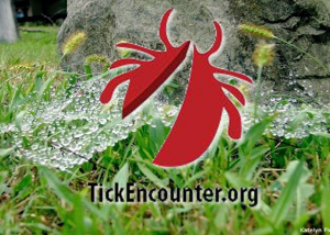 tick encounter.fw