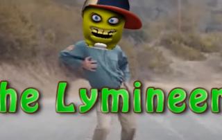 lyme disease challenge the lymineers