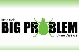 litte tick big problem